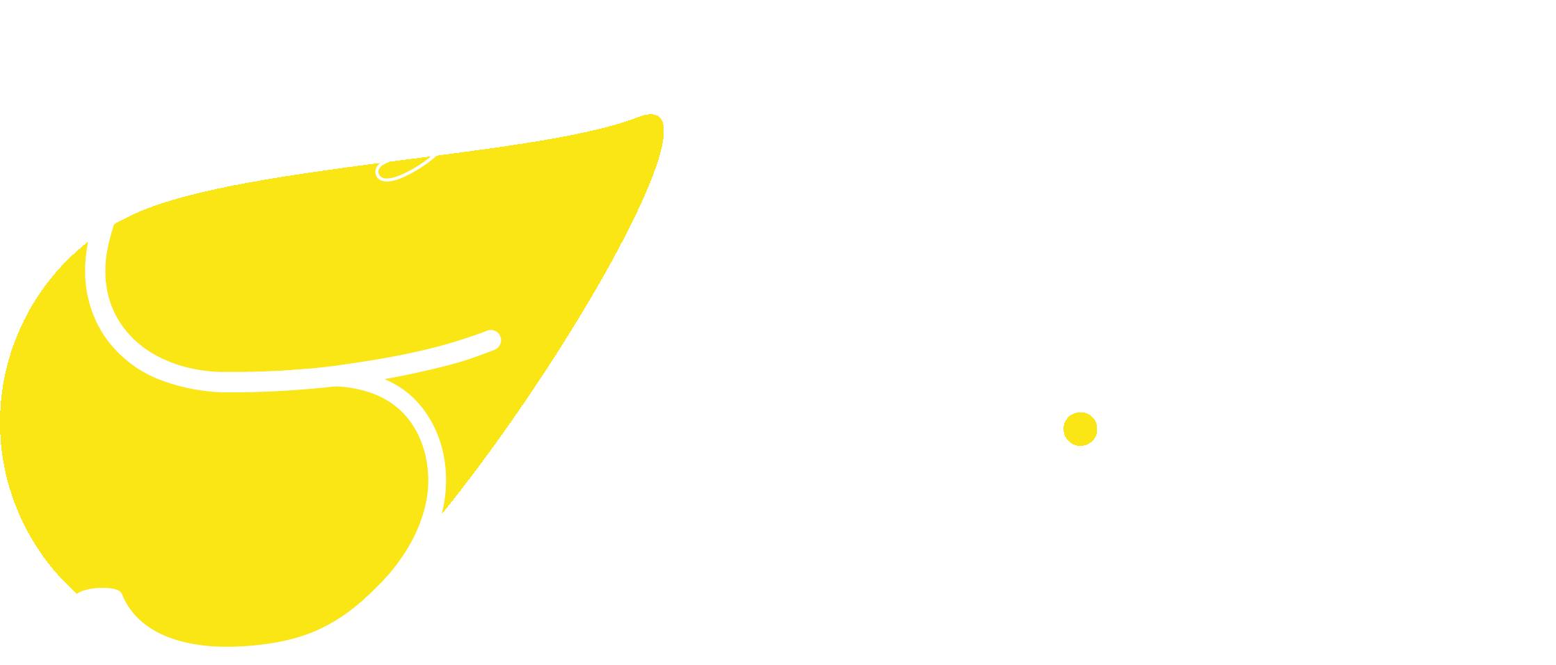 Service de rédaction et correction pour les professionnels et les particuliers